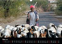 Indiens Gesichter (Wandkalender 2019 DIN A3 quer) - Produktdetailbild 5