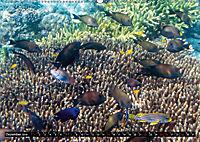 Indonesien: Gili Inseln (Wandkalender 2019 DIN A2 quer) - Produktdetailbild 12