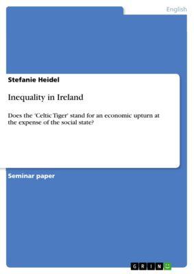 Inequality in Ireland, Stefanie Heidel