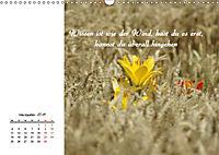 Innehalten in der Natur ... mit Weisheiten und Sprichworten der Indianer (Wandkalender 2019 DIN A3 quer) - Produktdetailbild 11