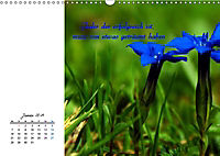 Innehalten in der Natur ... mit Weisheiten und Sprichworten der Indianer (Wandkalender 2019 DIN A3 quer) - Produktdetailbild 1