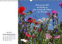 Innehalten in der Natur ... mit Weisheiten und Sprichworten der Indianer (Wandkalender 2019 DIN A3 quer) - Produktdetailbild 5