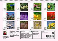 Innehalten in der Natur ... mit Weisheiten und Sprichworten der Indianer (Wandkalender 2019 DIN A3 quer) - Produktdetailbild 13
