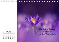 Innehalten in der Natur ... mit Weisheiten und Sprichworten der Indianer (Tischkalender 2019 DIN A5 quer) - Produktdetailbild 6