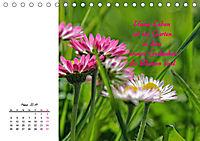 Innehalten in der Natur ... mit Weisheiten und Sprichworten der Indianer (Tischkalender 2019 DIN A5 quer) - Produktdetailbild 3