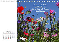 Innehalten in der Natur ... mit Weisheiten und Sprichworten der Indianer (Tischkalender 2019 DIN A5 quer) - Produktdetailbild 5