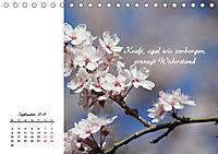 Innehalten in der Natur ... mit Weisheiten und Sprichworten der Indianer (Tischkalender 2019 DIN A5 quer) - Produktdetailbild 9