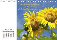 Innehalten in der Natur ... mit Weisheiten und Sprichworten der Indianer (Tischkalender 2019 DIN A5 quer) - Produktdetailbild 12
