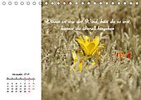 Innehalten in der Natur ... mit Weisheiten und Sprichworten der Indianer (Tischkalender 2019 DIN A5 quer) - Produktdetailbild 11