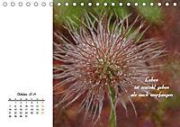 Innehalten in der Natur ... mit Weisheiten und Sprichworten der Indianer (Tischkalender 2019 DIN A5 quer) - Produktdetailbild 10