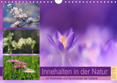 Innehalten in der Natur ... mit Weisheiten und Sprichworten der Indianer (Wandkalender 2019 DIN A4 quer), Susan Michel