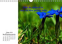 Innehalten in der Natur ... mit Weisheiten und Sprichworten der Indianer (Wandkalender 2019 DIN A4 quer) - Produktdetailbild 1