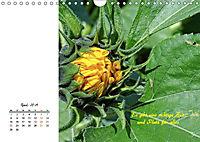Innehalten in der Natur ... mit Weisheiten und Sprichworten der Indianer (Wandkalender 2019 DIN A4 quer) - Produktdetailbild 4
