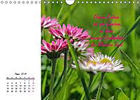 Innehalten in der Natur ... mit Weisheiten und Sprichworten der Indianer (Wandkalender 2019 DIN A4 quer) - Produktdetailbild 3