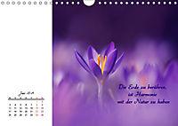 Innehalten in der Natur ... mit Weisheiten und Sprichworten der Indianer (Wandkalender 2019 DIN A4 quer) - Produktdetailbild 6