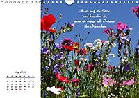 Innehalten in der Natur ... mit Weisheiten und Sprichworten der Indianer (Wandkalender 2019 DIN A4 quer) - Produktdetailbild 5