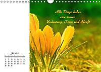 Innehalten in der Natur ... mit Weisheiten und Sprichworten der Indianer (Wandkalender 2019 DIN A4 quer) - Produktdetailbild 7