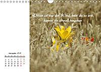 Innehalten in der Natur ... mit Weisheiten und Sprichworten der Indianer (Wandkalender 2019 DIN A4 quer) - Produktdetailbild 11