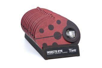 Insect Eye - Ladybird