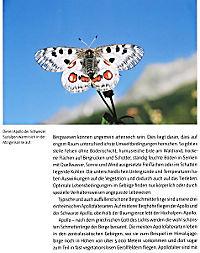 Insekten - Produktdetailbild 8