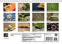 INSEKTEN GANZ NAHE (Wandkalender 2019 DIN A4 quer) - Produktdetailbild 13