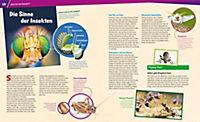 Insekten. Überlebenskünstler auf sechs Beinen - Produktdetailbild 1
