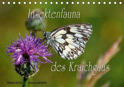 Insektenfauna des Kraichgaus (Tischkalender 2019 DIN A5 quer), Monika Reiter