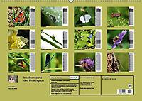 Insektenfauna des Kraichgaus (Wandkalender 2019 DIN A2 quer) - Produktdetailbild 9