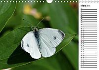 Insektenfauna des Kraichgaus (Wandkalender 2019 DIN A4 quer) - Produktdetailbild 3