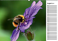 Insektenfauna des Kraichgaus (Wandkalender 2019 DIN A2 quer) - Produktdetailbild 8