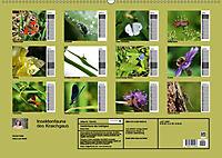 Insektenfauna des Kraichgaus (Wandkalender 2019 DIN A2 quer) - Produktdetailbild 13