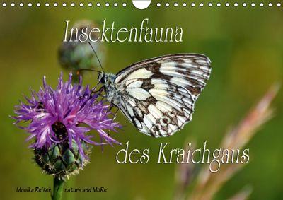Insektenfauna des Kraichgaus (Wandkalender 2019 DIN A4 quer), Monika Reiter