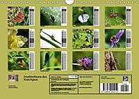 Insektenfauna des Kraichgaus (Wandkalender 2019 DIN A4 quer) - Produktdetailbild 13