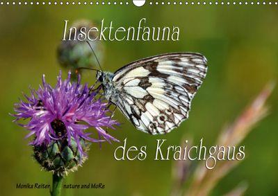 Insektenfauna des Kraichgaus (Wandkalender 2019 DIN A3 quer), Monika Reiter