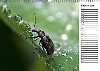 Insektenfauna des Kraichgaus (Wandkalender 2019 DIN A3 quer) - Produktdetailbild 2