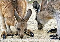Inselschönheit Tasmanien (Wandkalender 2019 DIN A3 quer) - Produktdetailbild 4