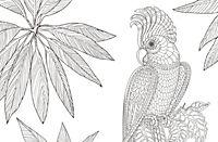 Inspiration Wildlife - Produktdetailbild 3