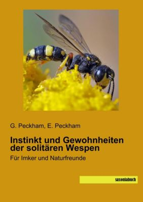 Instinkt und Gewohnheiten der solitären Wespen