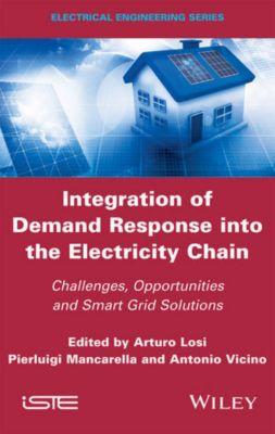 Integration of Demand Response into the Electricity Chain, Antonio Vicino, Arturo Losi, Pierluigi Mancarella