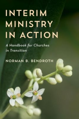 Interim Ministry in Action, Norman B. Bendroth