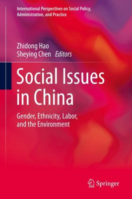 International Perspectives on Social Policy, Administration, and Practice: Social Issues in China