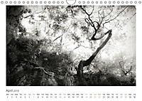 Into the Forest (Wall Calendar 2019 DIN A4 Landscape) - Produktdetailbild 4