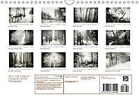 Into the Forest (Wall Calendar 2019 DIN A4 Landscape) - Produktdetailbild 13