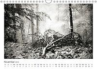 Into the Forest (Wall Calendar 2019 DIN A4 Landscape) - Produktdetailbild 11
