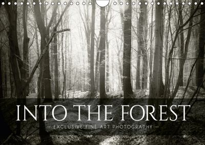 Into the Forest (Wall Calendar 2019 DIN A4 Landscape), Dorit M. Fuhg