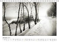 Into the Forest (Wall Calendar 2019 DIN A4 Landscape) - Produktdetailbild 1