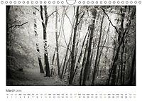 Into the Forest (Wall Calendar 2019 DIN A4 Landscape) - Produktdetailbild 3