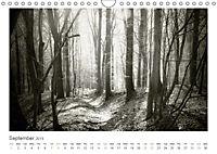 Into the Forest (Wall Calendar 2019 DIN A4 Landscape) - Produktdetailbild 9