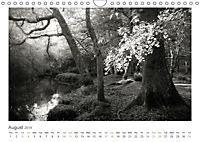 Into the Forest (Wall Calendar 2019 DIN A4 Landscape) - Produktdetailbild 8