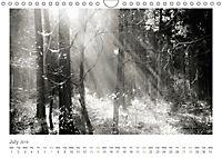 Into the Forest (Wall Calendar 2019 DIN A4 Landscape) - Produktdetailbild 7